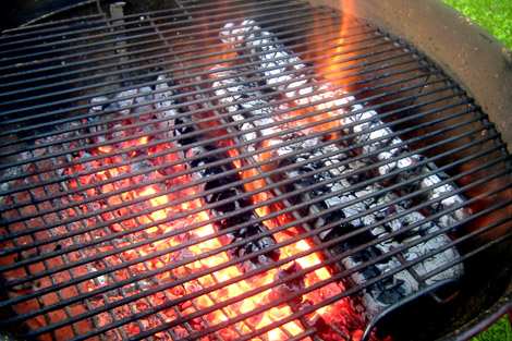 Grilled_fish_fire_1