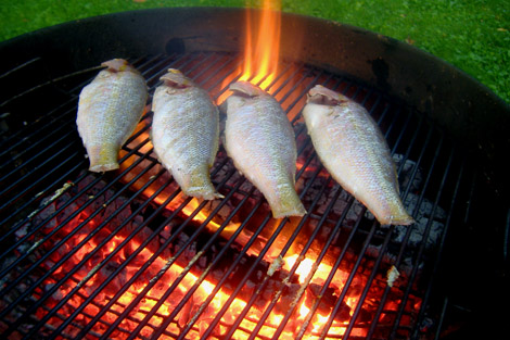 Grilled_fish_fire_4