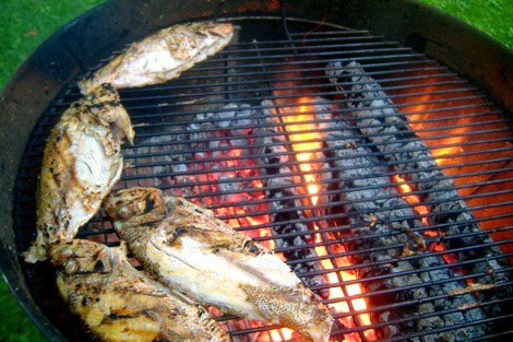 Grilled_fish_fire_5