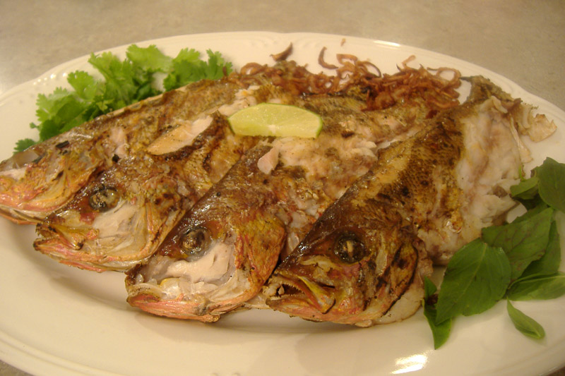 Grilled_fish_plated